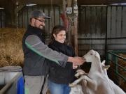 Excursion nature et fromages de chèvre - Villandry Val de loire écotourisme