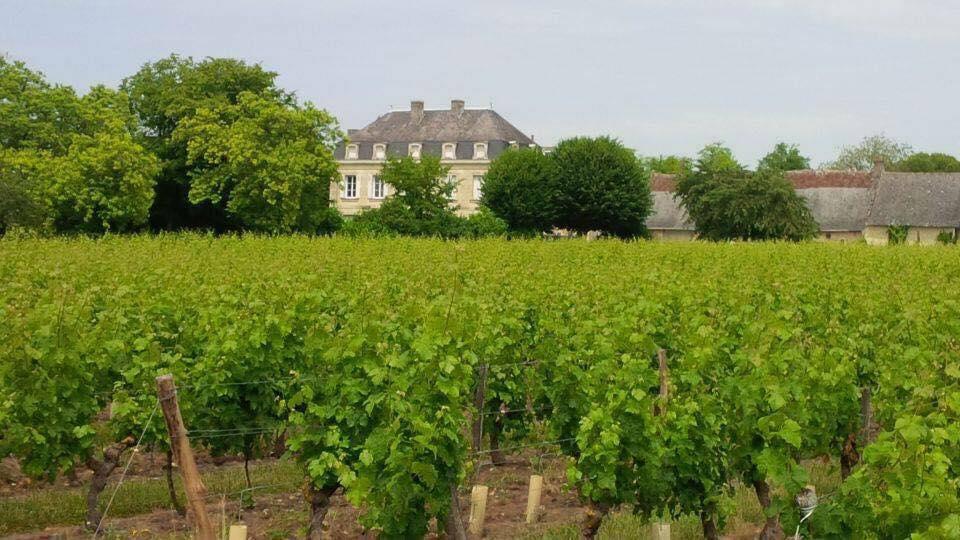Clos de la Niverdière en Touraine