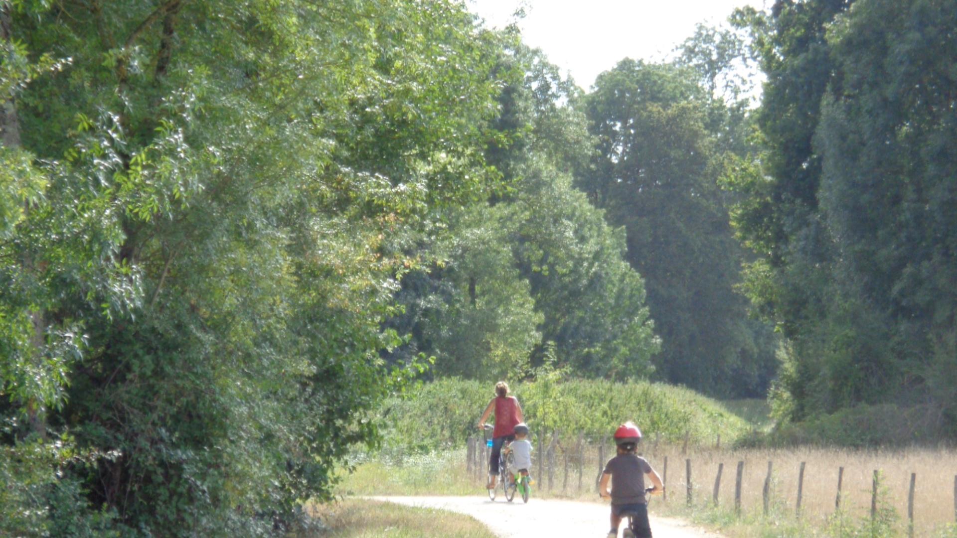 Journée loire à vélo et accrobranche