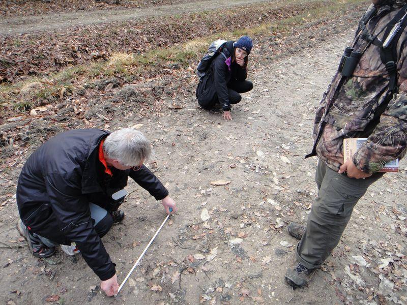 Formation faune sauvage en Touraine