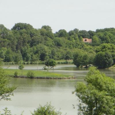 Lac de Chemillé