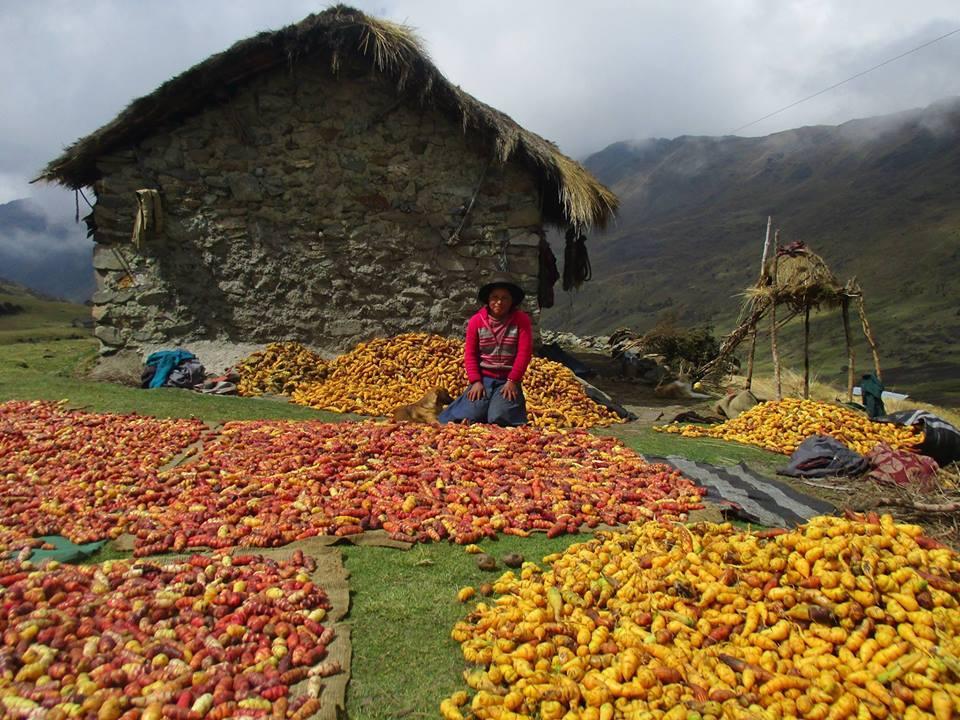 Séjour responsable au Pérou