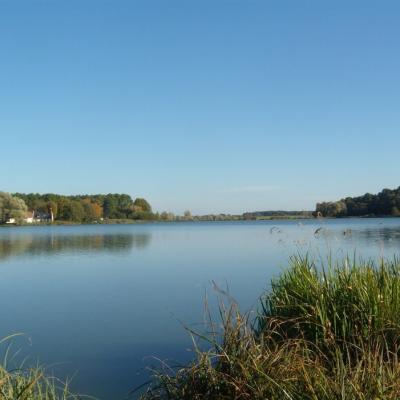 Lac de Rillé - excursion val de loire écotourisme