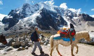 Trek nature au Pérou séjour guide au pérou